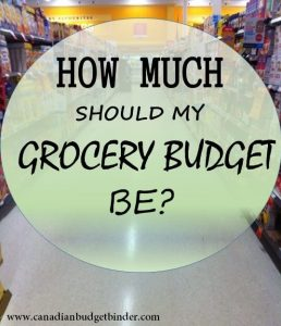 how much should my grocery budget be