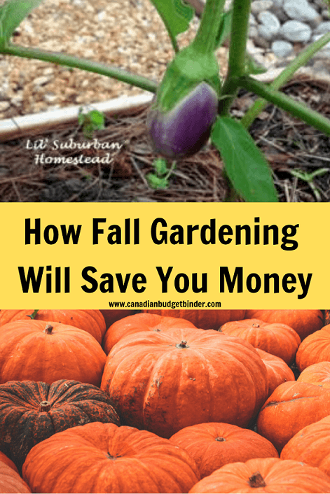 fall gardening ontario
