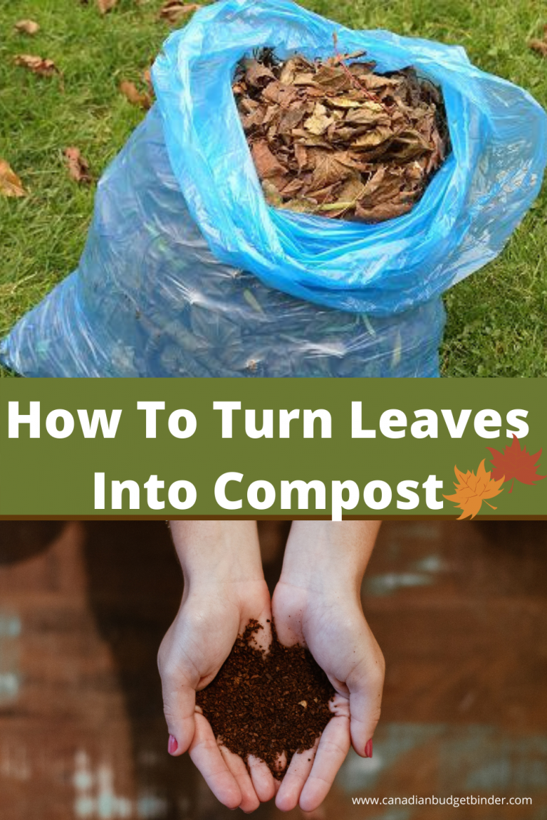 How To Turn Leaves Into Compost