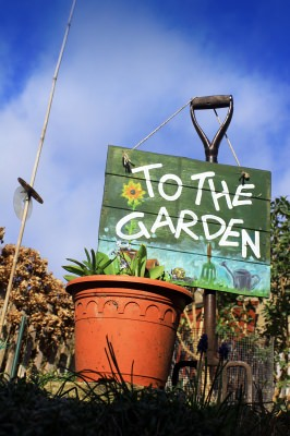 Garden Growing Guide: How To Prepare Your Garden
