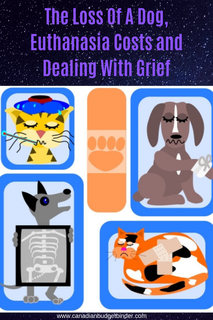 The Loss Of A Dog, Euthanasia Costs and Dealing With Grief