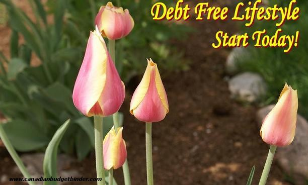Working Towards A Debt Free Lifestyle In 8 Steps
