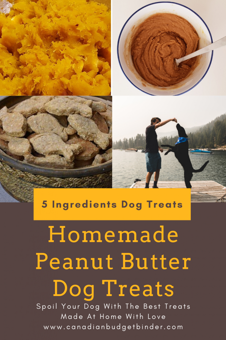 Homemade Peanut Butter Dog Treats (5 Ingredients)
