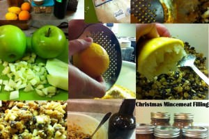 Steps-to-make-mincemeat-filling.jpg-wm