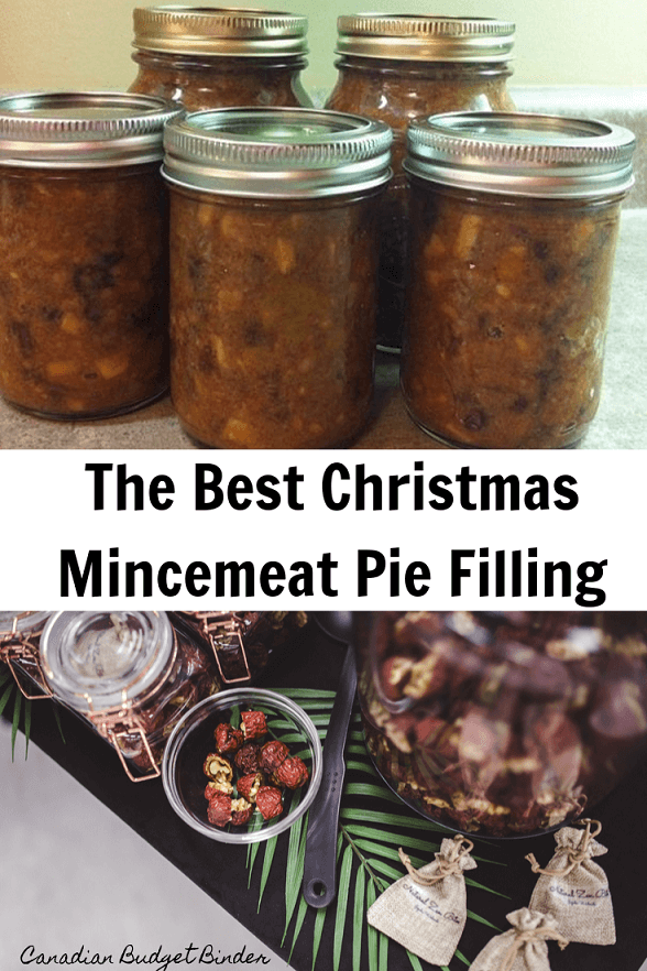The Best Christmas Mincemeat Filling Part 1