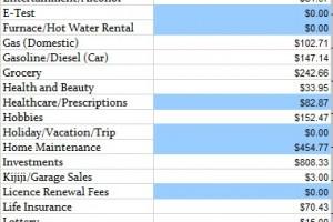 actual budget Jan 2014