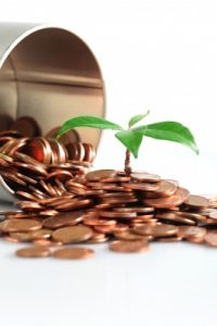 high net worth money grows