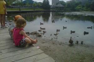 kids free ducks