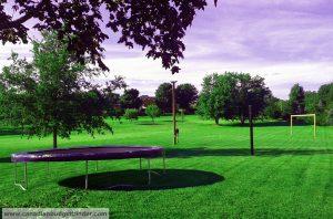 Green Grass Property Canada