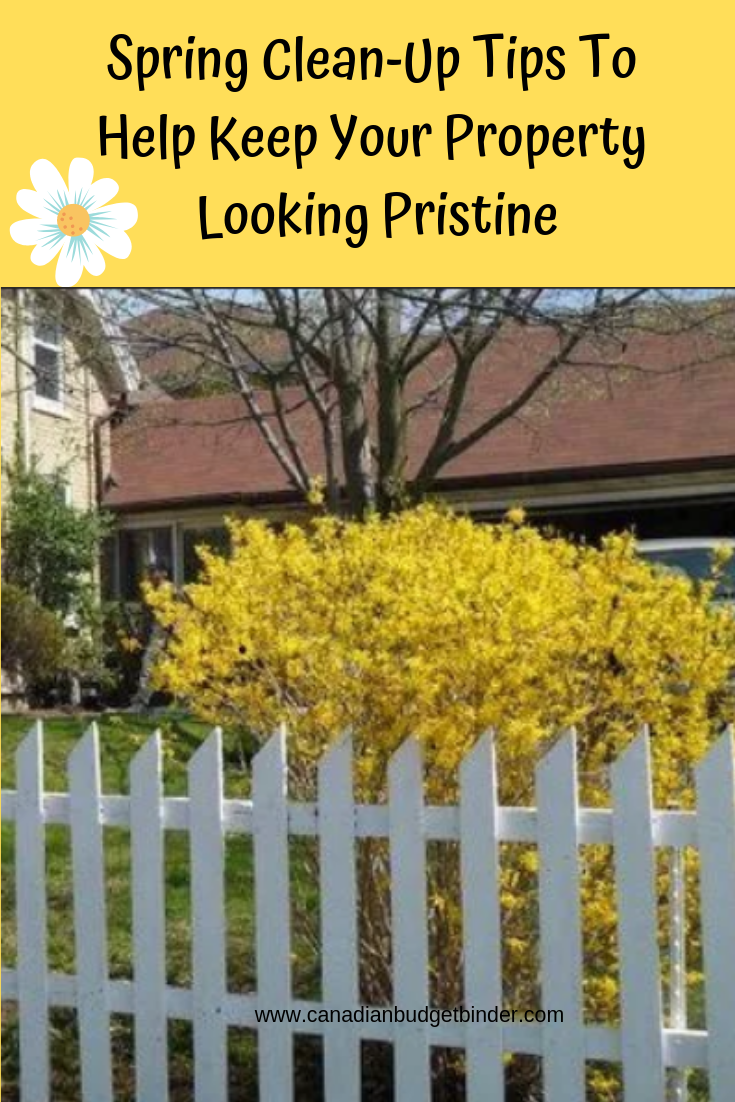 Spring cleanup tips to keep your property looking pristine