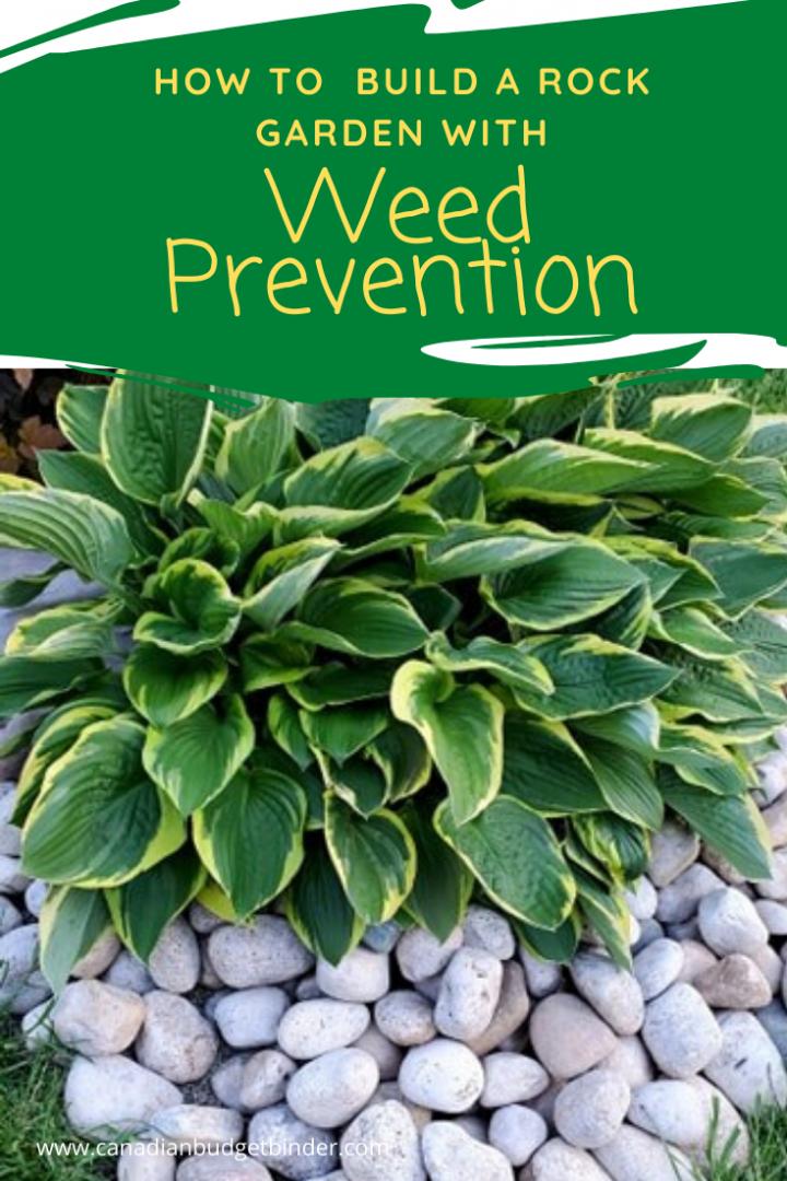 weed prevention rock garden