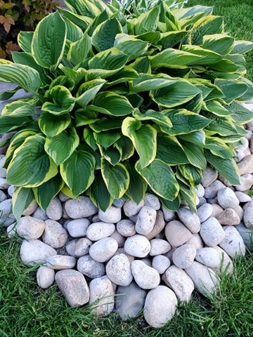 rock gardening with weed prevention is an easy landscaping upgrade.