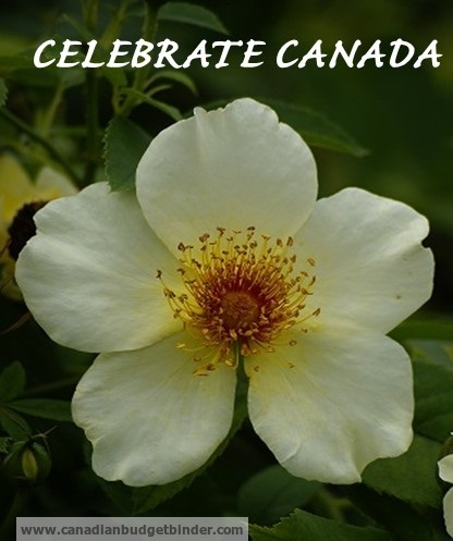 Celebrate Canada Day enjoying our beautiful country: The Saturday Weekend Review #78