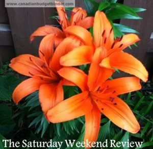 The Saturday Weekend Review Orange Lily Babysitter edition