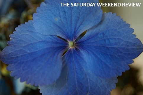 Reflection on summer days: The Saturday Weekend Review #87