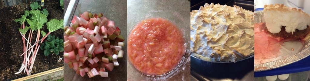 how to make rhubarb pie