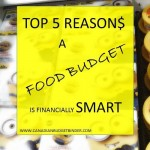 Top 5 Reasons A Food Budget Is Financially Smart : The Grocery Game Challenge #3 June 15-21, 2015