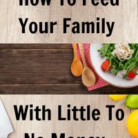 Feeding Family No Money
