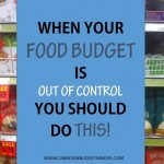 When Your Food Budget Is Out of Control You Should Do This! : The Grocery Game Challenge #2 Sept 14-20,2015