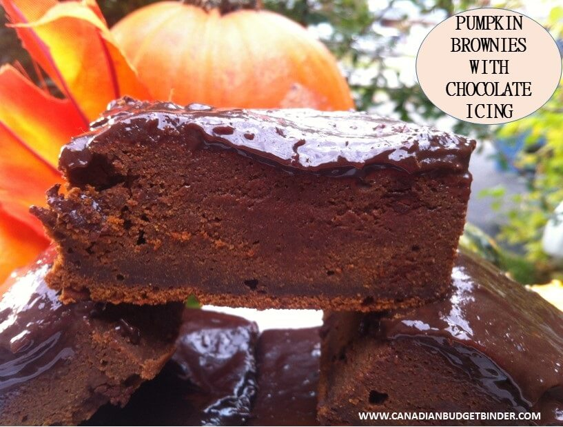 The Best Pumpkin Brownies with Chocolate Icing