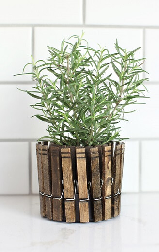 clothespinplanters_rosemary