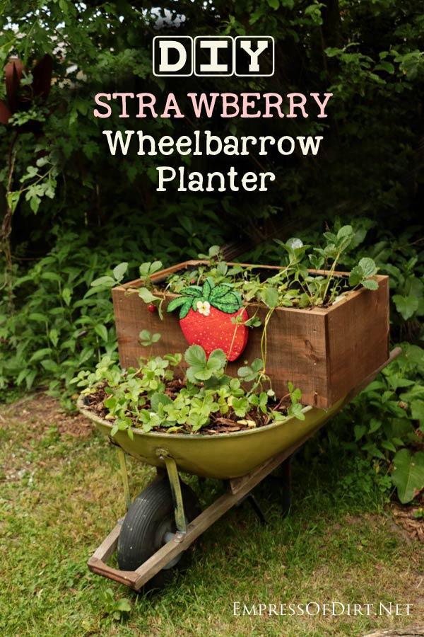 DIY-Strawberry-Wheelbarrow-Planter-C1