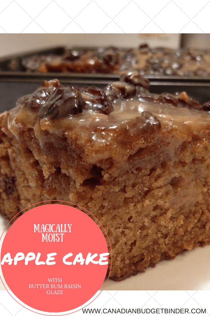 MAGICALLY MOIST APPLE CAKE PINTEREST