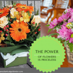 How To Save Money Buying Fresh Flowers