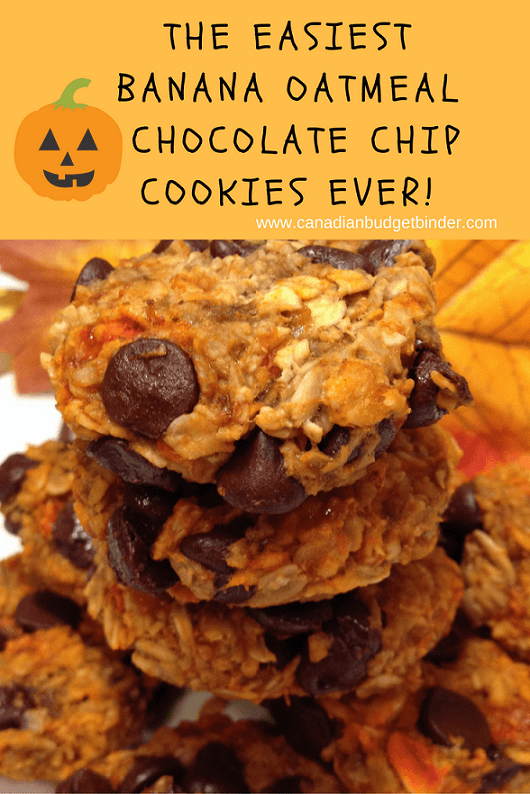 the-easiest-banana-oatmeal-chocolate-chip-cookies-ever