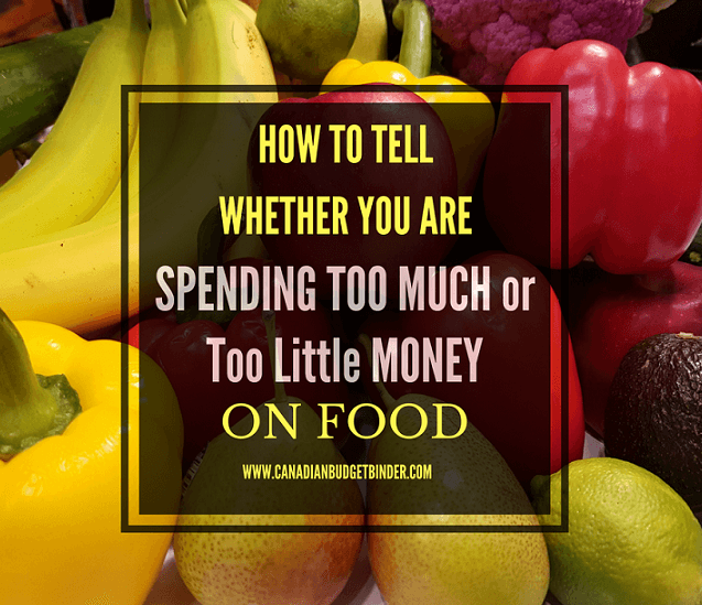 HOW TO TELL IF YOU ARE SPENDING TOO LITTLE OR TOO MUCH MONEY ON FOOD