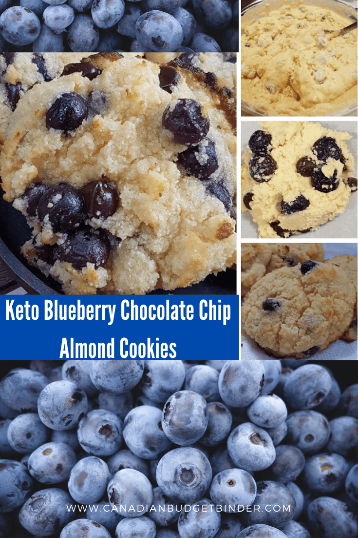 Keto Blueberry Chocolate Chip Almond Cookies
