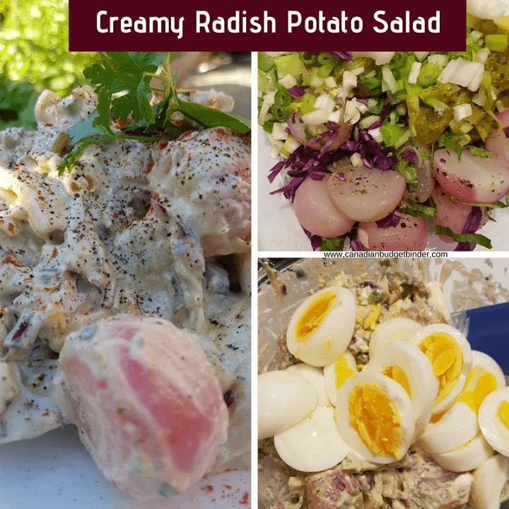 An imitation potato salad but made with boiled radishes and keto-friendly.