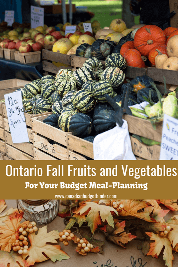 Ontario Fall Fruits and Veg For Your Budget Meal Plan