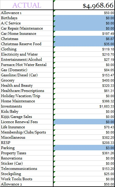 January 2019 Actual Monthly Budget