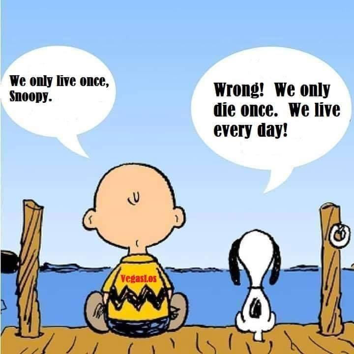 we only live once snoopy