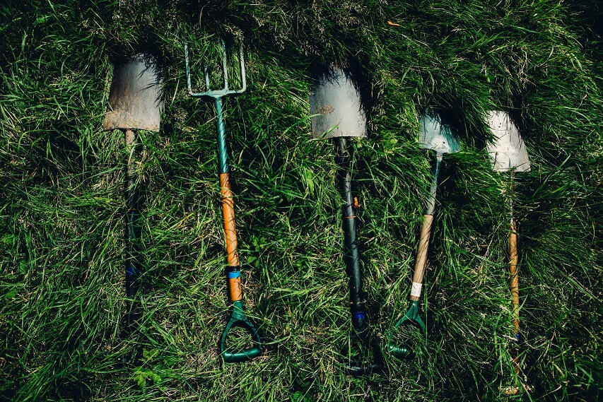 garden hobby