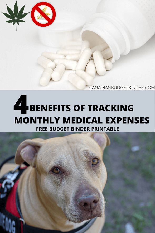 4 Benefits Of Tracking Monthly Medical Expenses (Free Printable)