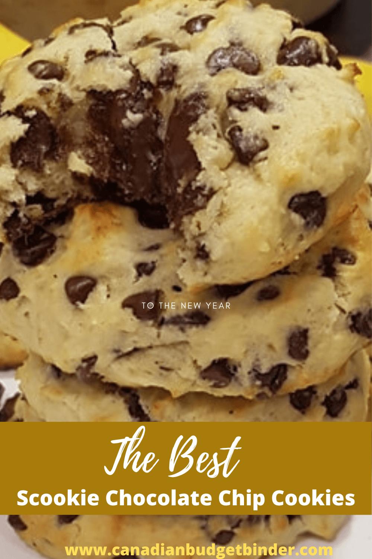 Scookies Chocolate Chip Cookies