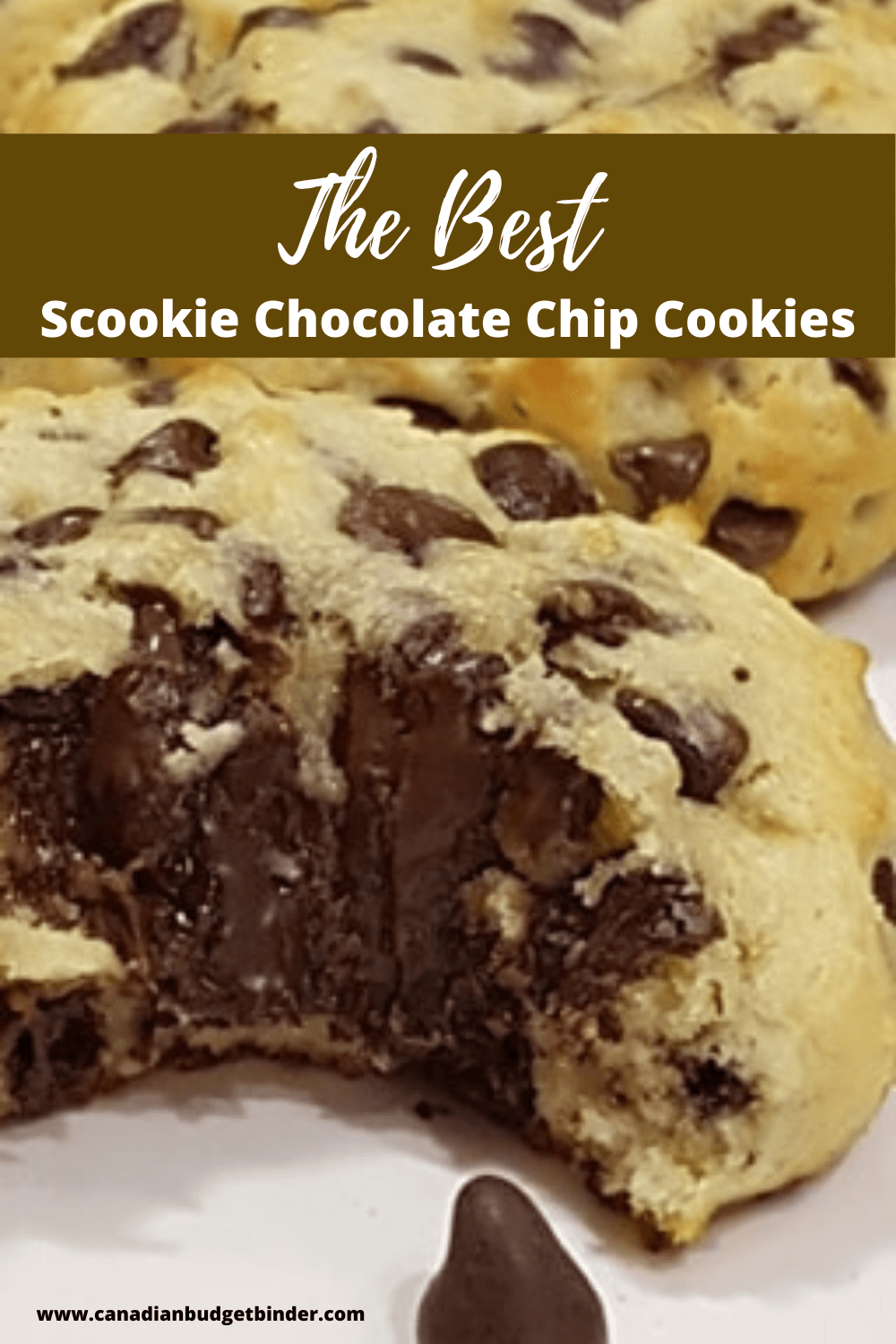 Scookies Ultimate Chocolate Chip Cookies