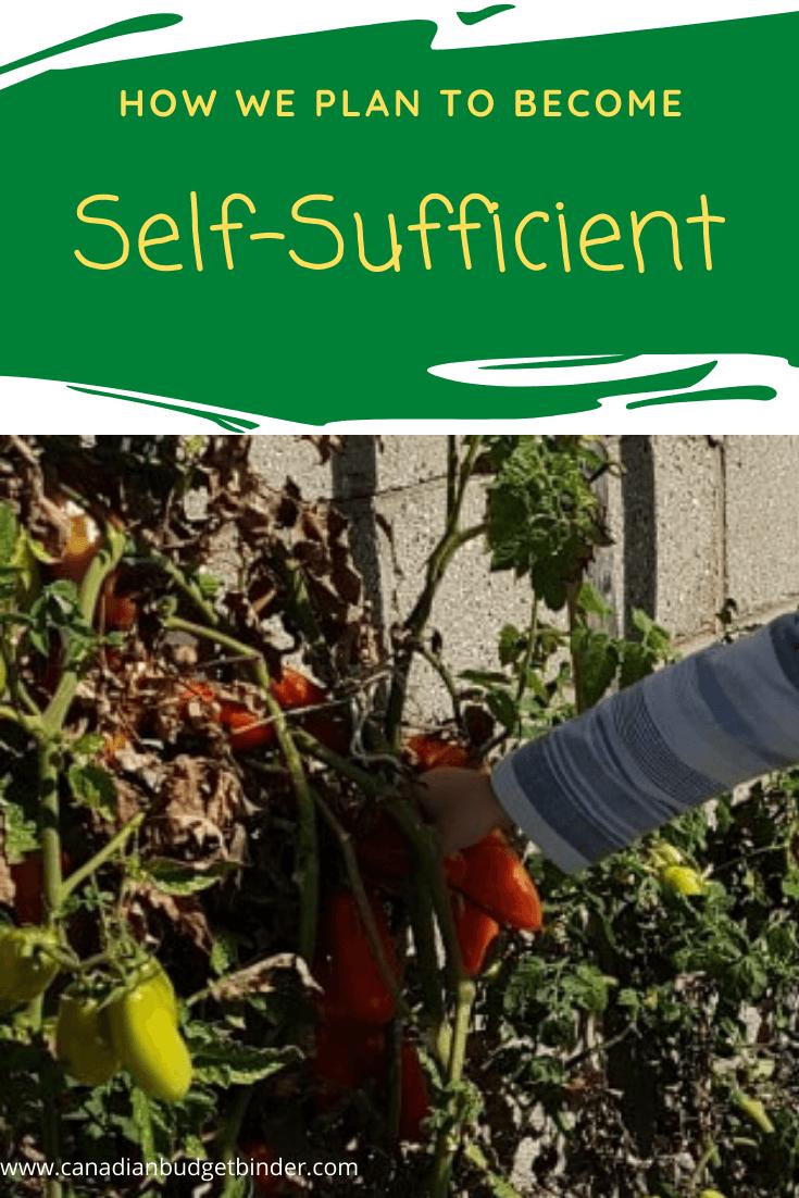 self-sufficient children