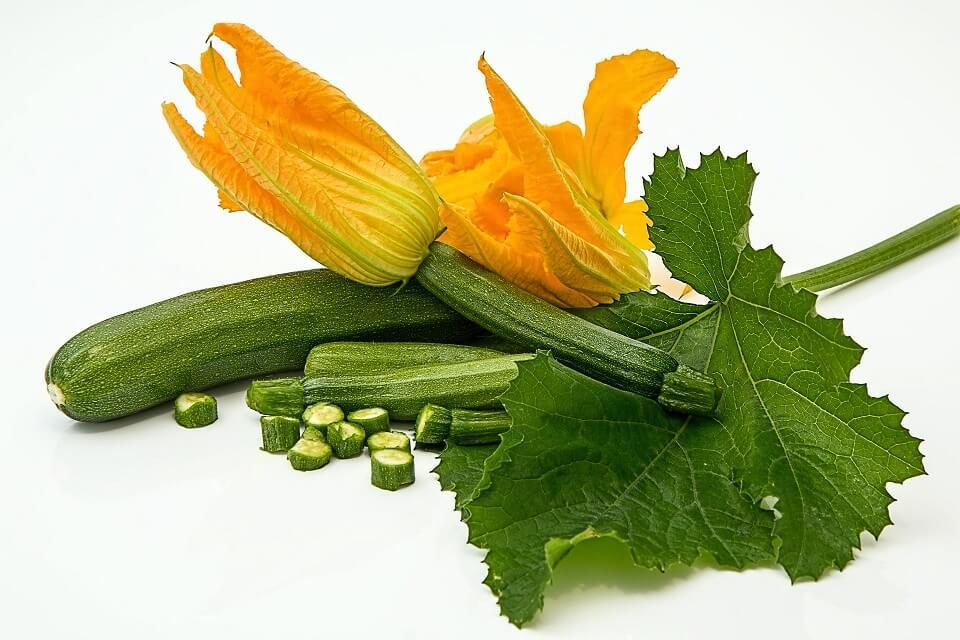 zucchini orange flowers