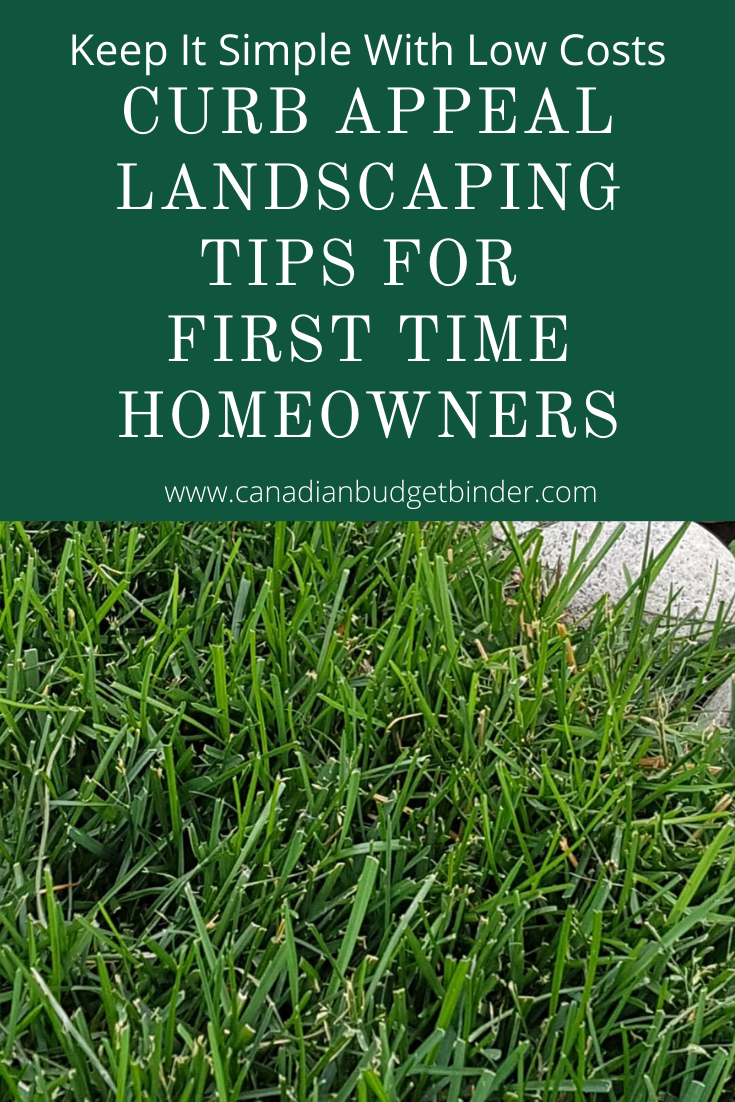 Curb Appeal Landscaping For First Time Homeowners - The Saturday Weekend Review #324
