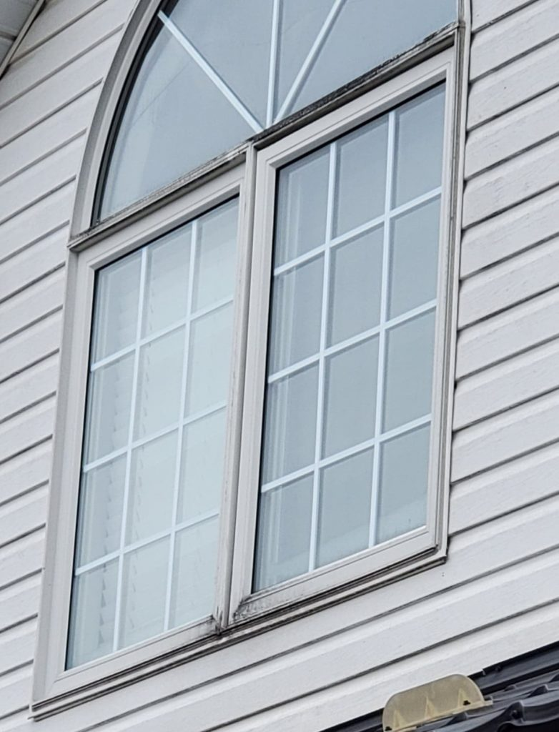 Beware of buying a home with moldy windows. If you own a home prevent moldy windows with annual maintenance.