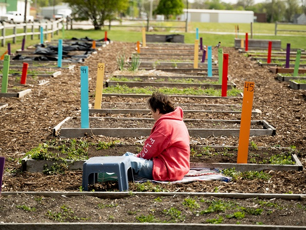 garden community plot