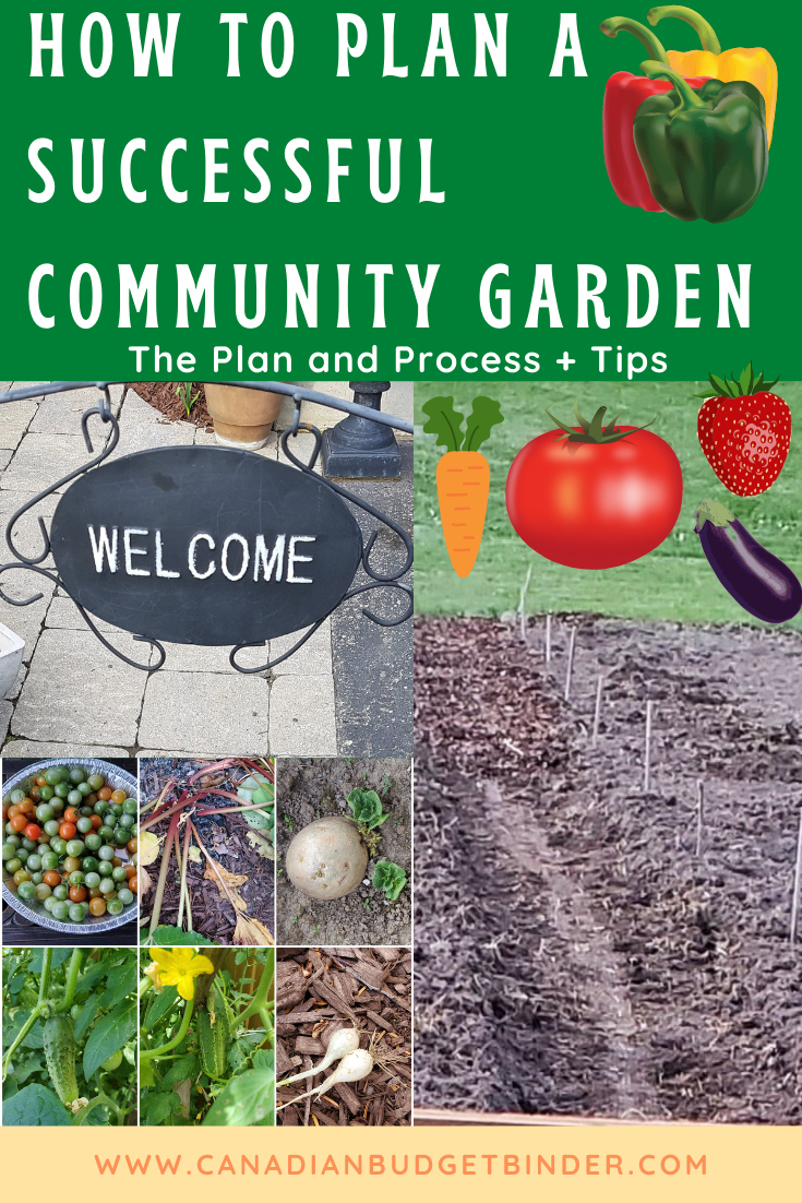 How To Plan A Successful Community Garden