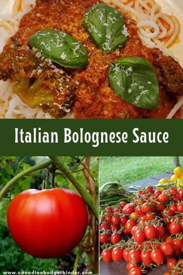 Italian Ragu
