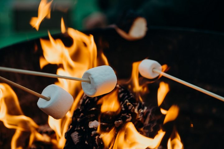 Roasting Marshmallows on skewers over the open picnic fire.