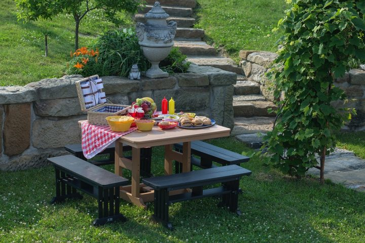 Picnic Foods and Essentials  with a picnic table