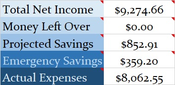 Family Budget Income Report