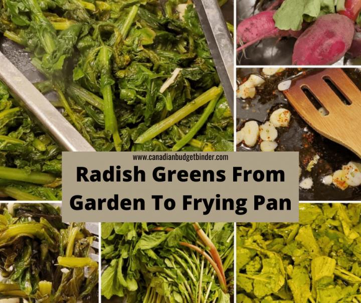 Prepare Radish Greens
